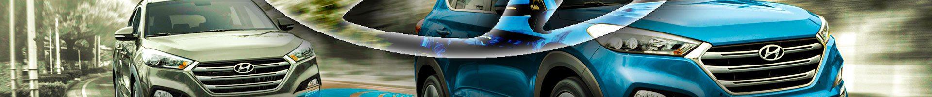Auto Azerbaijan Başarıdan Başarıya Koşuyor